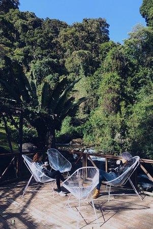 Terraza Al Lado Del Rio Savegre Picture Of Trogon Lodge