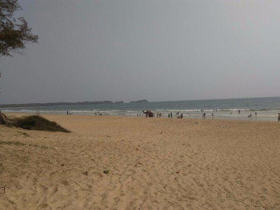 Camels on Shiroda beach
