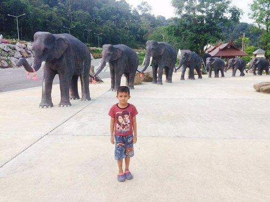 Trang Andaman Gateway: ช้างๆๆๆ