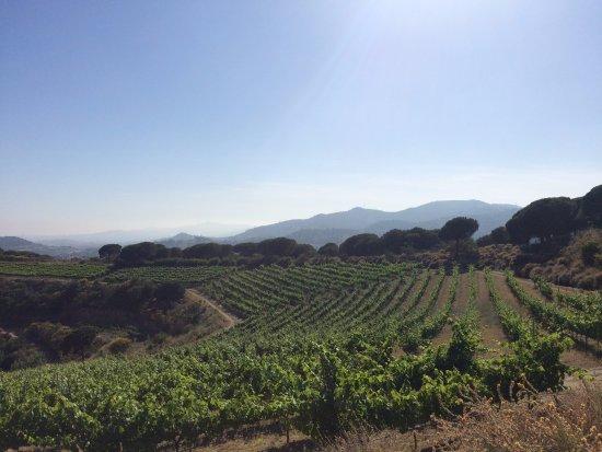 Alella, Hiszpania: Views
