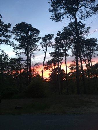 Nickerson State Park: photo0.jpg