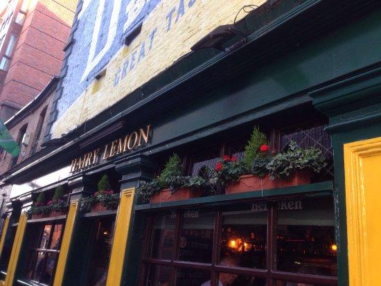 The Hairy Lemon Cafe Bar: photo0.jpg