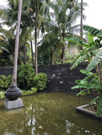 Hilton ngapali resort spa picture of hilton ngapali for Garden spas pool germantown tn