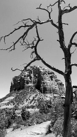 Bell Rock: photo0.jpg