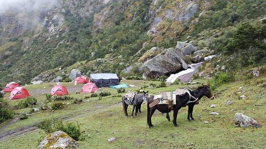 Lares Trek: Camp 2 Lares