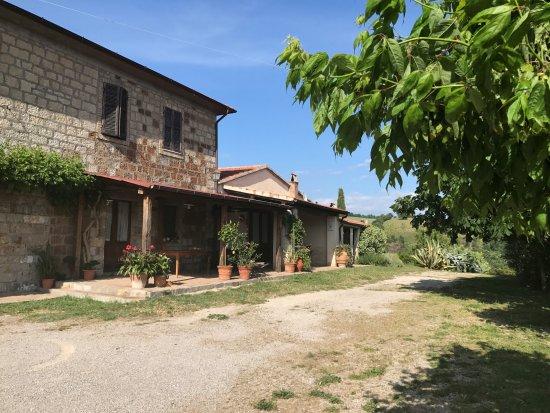 Roccalbegna Picture