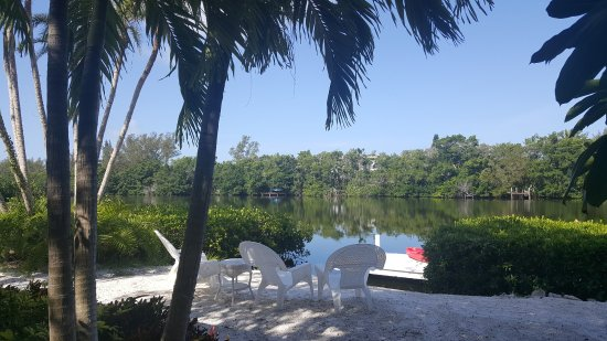Siesta Key Bungalows: Taken from outside the rooms of the Heron Lagoon. (Free kayaks are available.)