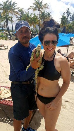 The Ritz-Carlton, San Juan: Jose with one of the properties iguanas