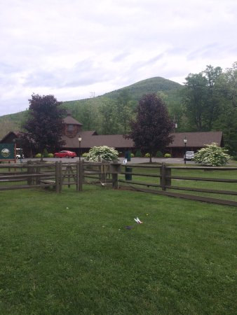 Mount Tremper, NY: Part of the dog run, with our lodge in view.
