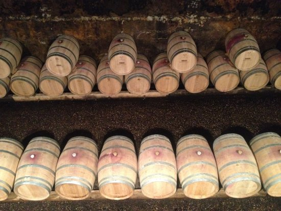 Le Taillan-Medoc, Frankrike: Barrels where wine is processed