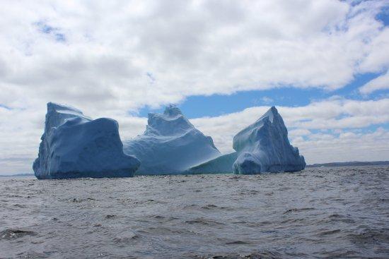 Discovery Sea Adventures照片