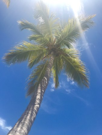 Secret Harbour Beach Resort: photo0.jpg