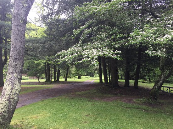 Wellsboro, PA: Stayed over Memorial Day weekend in primitive camping sites. Super pretty campground, very well
