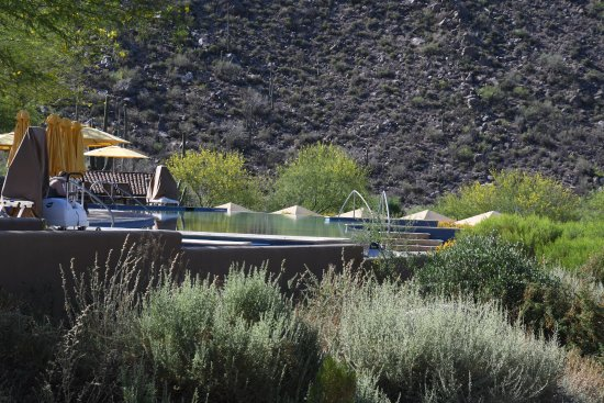 The Ritz-Carlton, Dove Mountain Picture