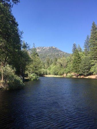 Idyllwild, CA: Relax, enjoy, rest, listen, shhhh, birds, water, fish, nature