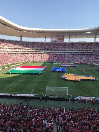 Estadio Omnilife: photo0.jpg