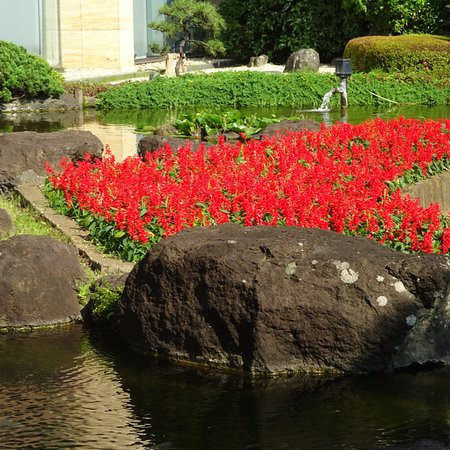 Colorful Flowers - Picture of Hotel New Otani Japanese Garden, Chiyoda - Trip...