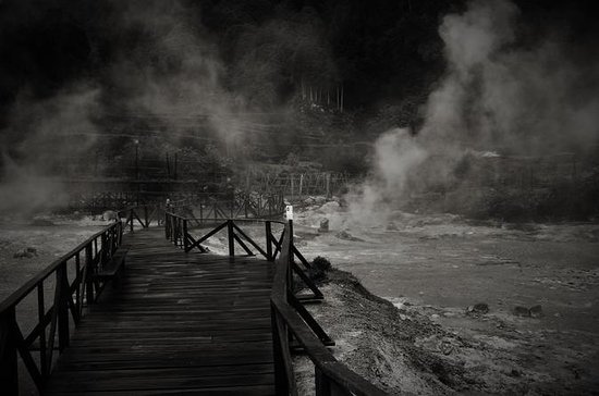Furnas Hot Springs Half-Day Tour