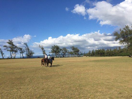 Waialua, HI: photo1.jpg