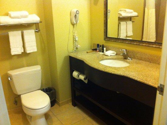 Μπράντον, Μισισιπής: Toilet & sink & mirror