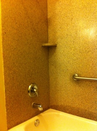 La Quinta Inn & Suites Brandon Jackson Airport E: Tub & shower
