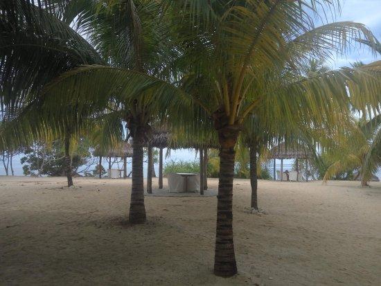 Coco Grove Beach Resort: resort area