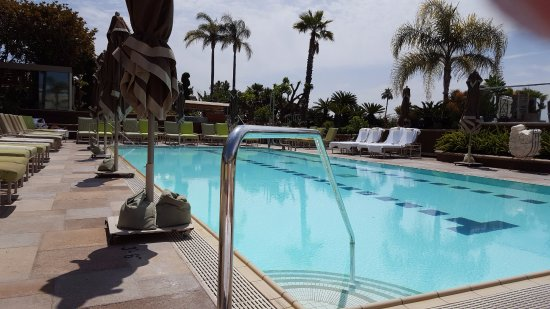 Hotel Pool Picture Of Four Seasons Hotel Los Angeles At Beverly Hills Los Angeles Tripadvisor