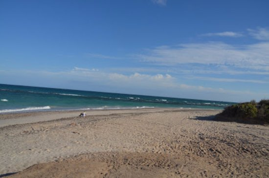Cabo Pulmo Marine Preserve: View