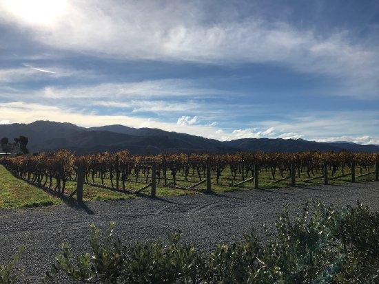 Highlight Wine Tours : photo1.jpg