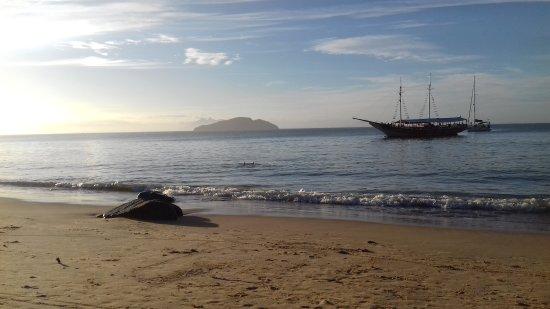 Armacao dos Buzios, RJ: 20170523_163223_large.jpg