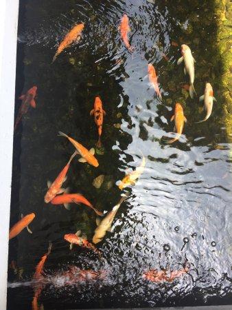 Veranda Resort and Spa Hua Hin Cha Am - MGallery Collection: photo2.jpg