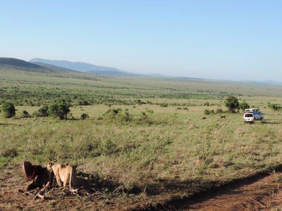 YHA Kenya Travel:  Kenya Short Safaris, Small Group Safaris Kenya, Small Group Safaris, Small Group Adventures, Ke