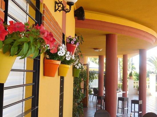Don Benito, España: Tenemos todas las facilidades para comidas, cenas de empresas, para eventos o  reuniones