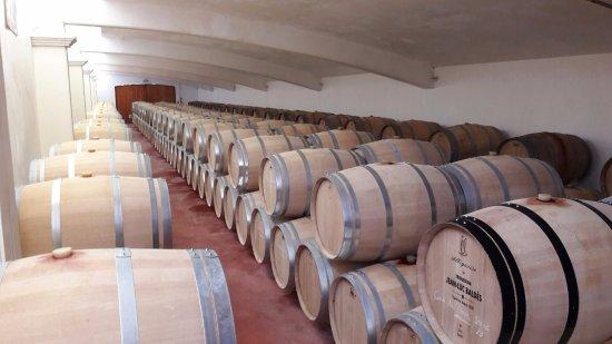 Vire-sur-Lot, Γαλλία: jean luc baldes cellars