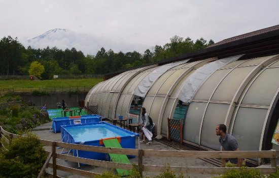 Minamitsuru-gun, Japón: Swimming pools for dogs - indoors and outdoor