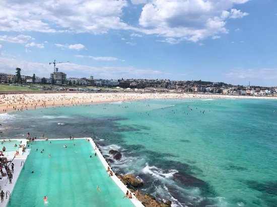 Icebergs Dining Room   Bar  View from Bondi Icebergs. View from Bondi Icebergs   Picture of Icebergs Dining Room   Bar