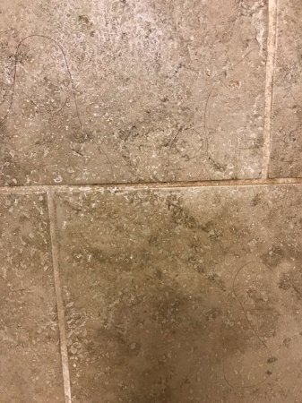 Dickinson, ND: This is jus some of the hair on the shower wall. The tile was also stained and the grout was dir