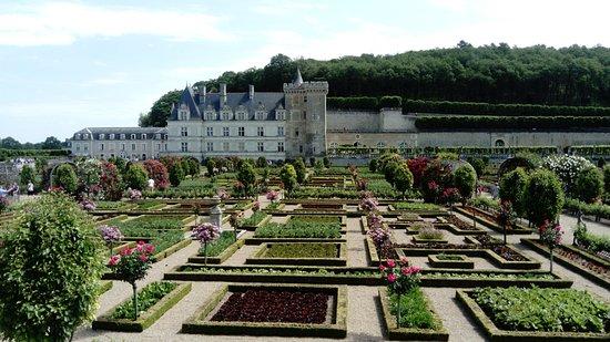Le jardin potager de villandry picture of chateau de for Jardin villandry