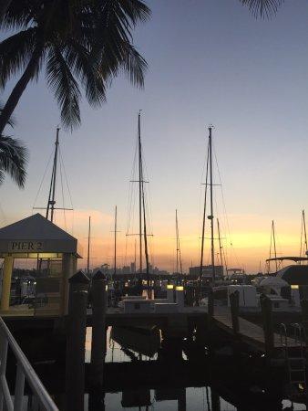 Sonesta Coconut Grove Miami: Vista desde la piscina