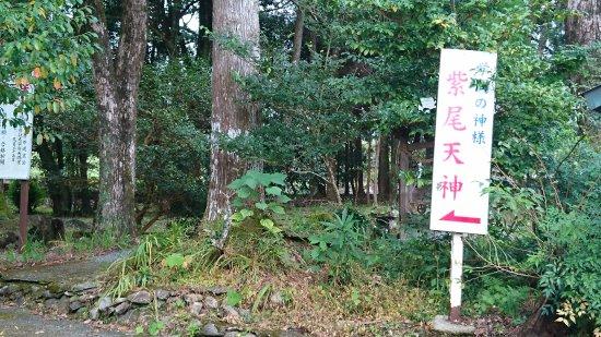 Satsuma-gun, ญี่ปุ่น: 学問の神様のおられました。