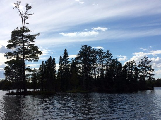 Ely, MN : One of the many little islands on Bear Head Lake