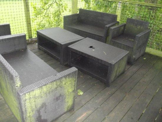 salon de jardin salle et troué - Picture of Les Nids de Chloro\'fil ...