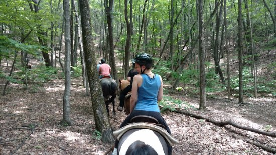 Dahlonega, Georgien: Gold City Corral - Trail Ride
