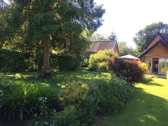 Camomile Cottage: photo0.jpg