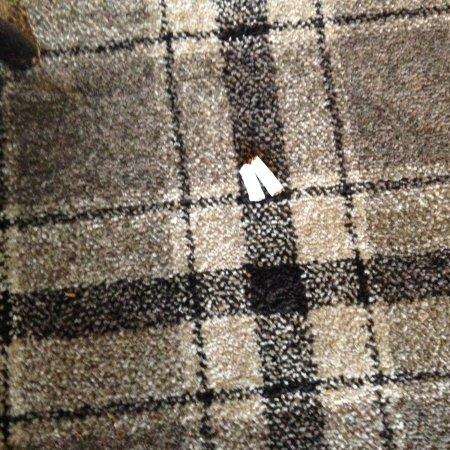 The Queens Head: Cigarette ends on floor of breakfast room.