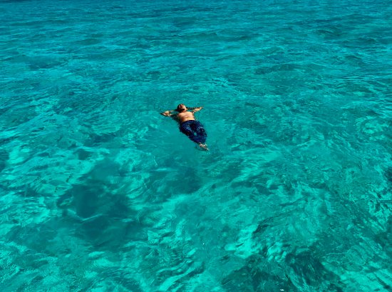 Spearfishing Today Cozumel - UPDATED 2019 - All You Need to