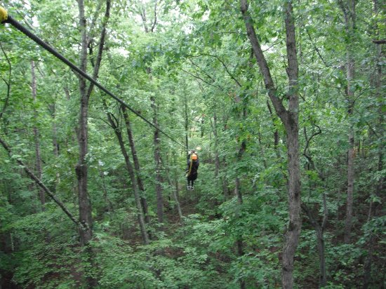 Chattooga Ridge Canopy Tours: zip lining through the trees!