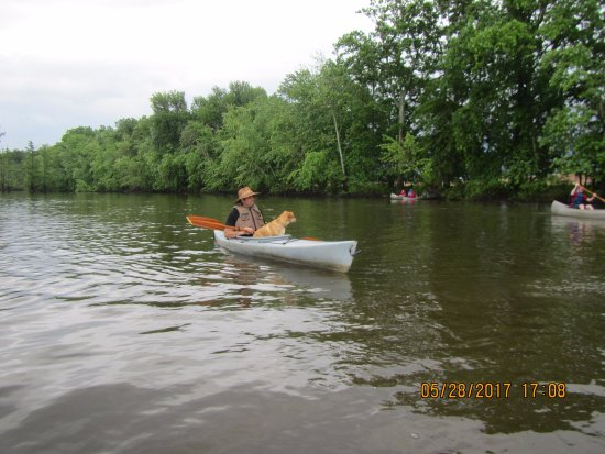 White Crane Canoe Rentals & Guide Service: Mark and his dog.
