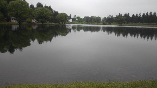 Knox, PA: 20170528_102236_large.jpg