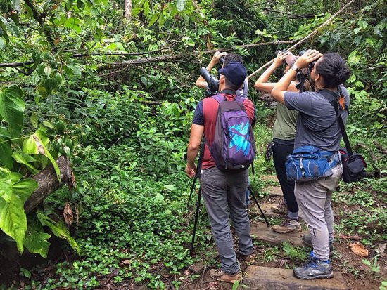 Boca Tapada, Kosta Rika: IMG-20170530-WA0000_large.jpg